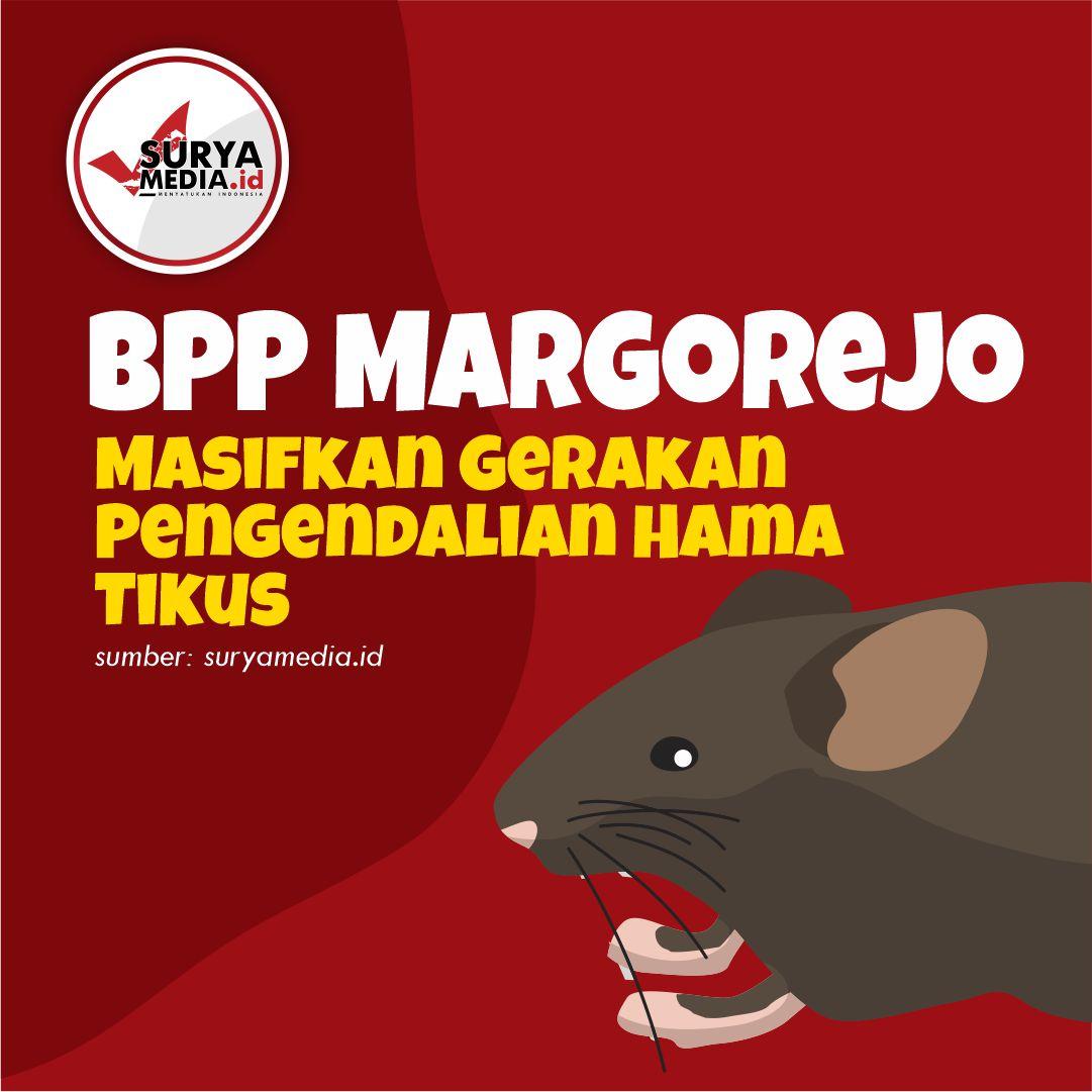 Pengendalian Hama Tikus A