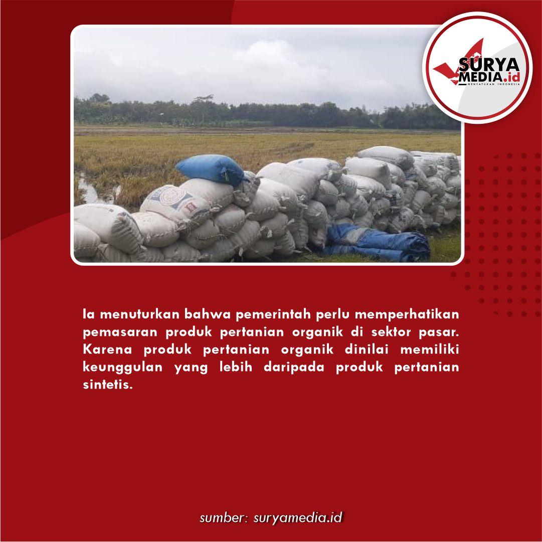harga produk pertanian Organik C