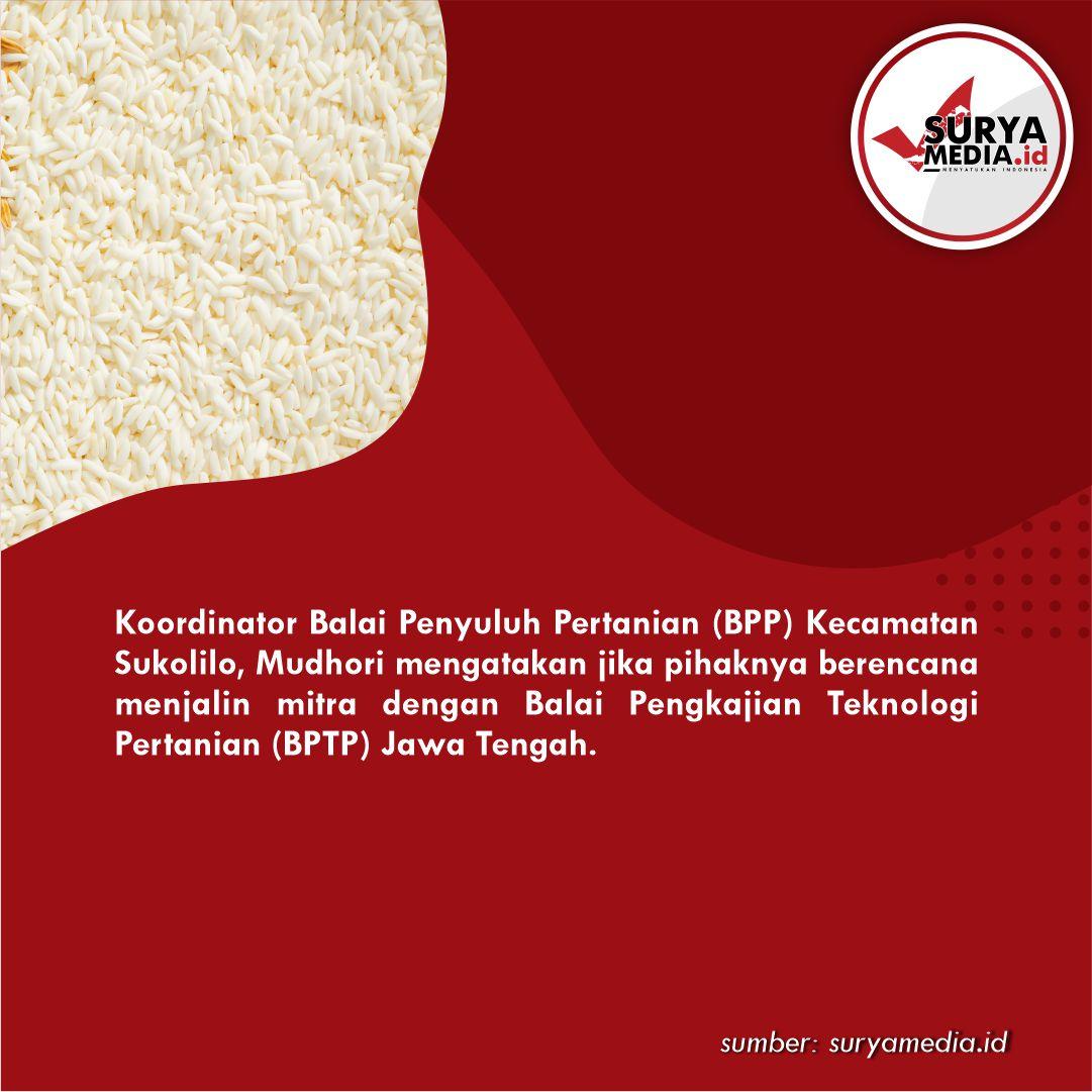 Wujudkan Inovasi dan Diseminasi Teknologi, BPP Sukolilo Gandeng BPTP Jawa Tengah b