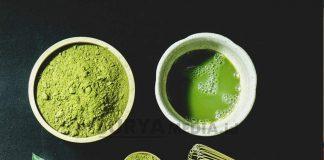 KENALI MANFAAT KESEHATAN ANTARA GREEN TEA DAN MATCHA