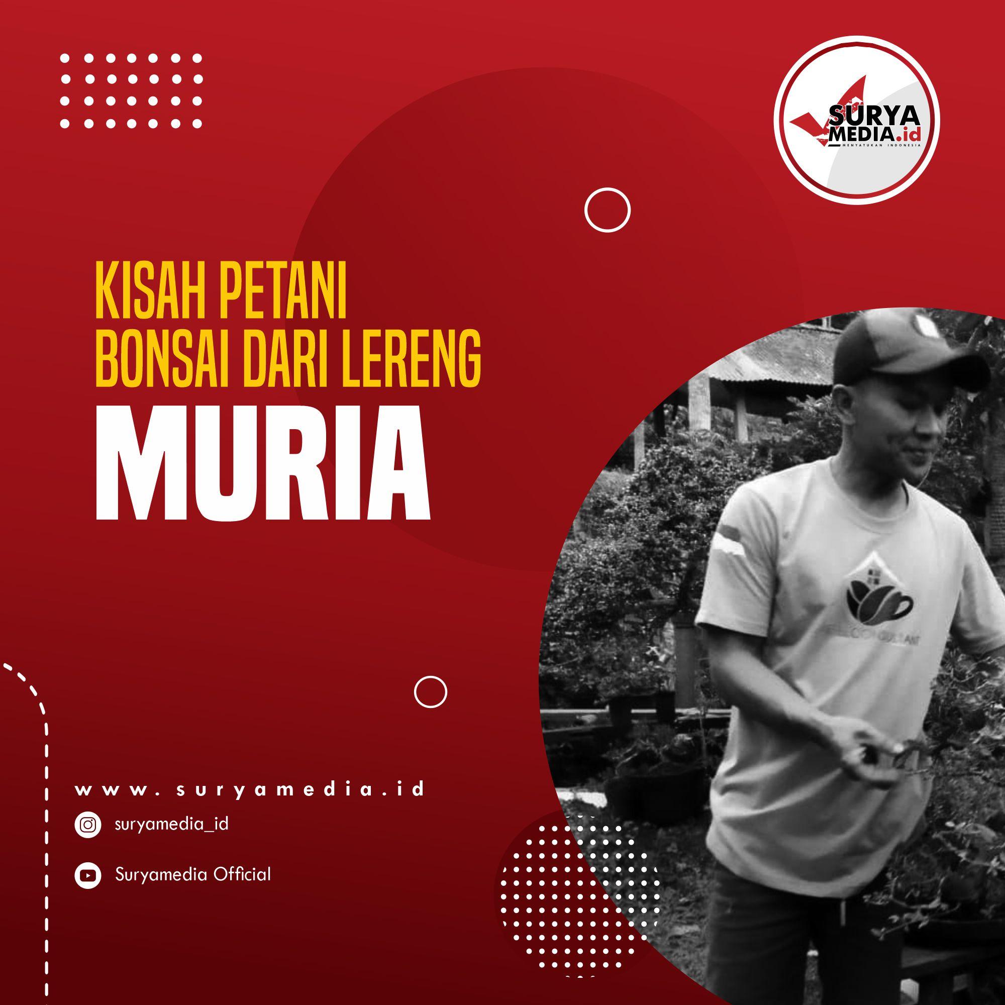 Kisah Petani Bonsai dari Lereng Muria A
