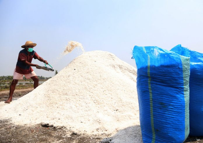 Gandeng DKPP Surabaya, Petani Garam Tingkatkan Kualitas Produksi